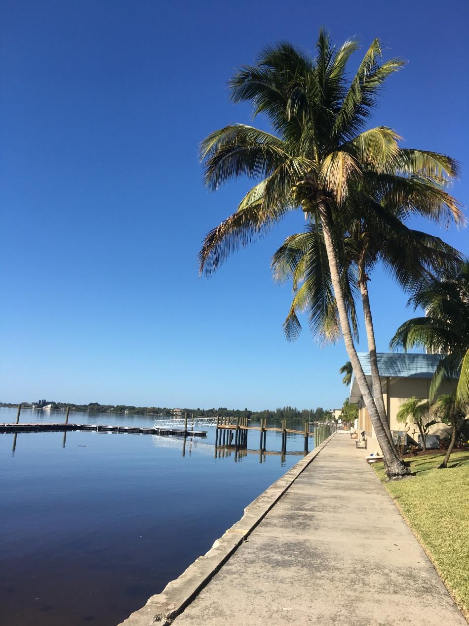 Florida_Pier